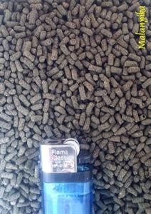 Image de mini sticks proteines
